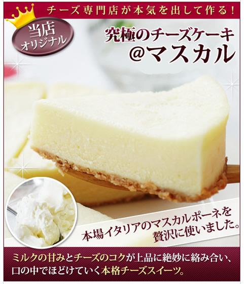 オーダーチーズドットコムの究極のチーズケーキが15%OFF