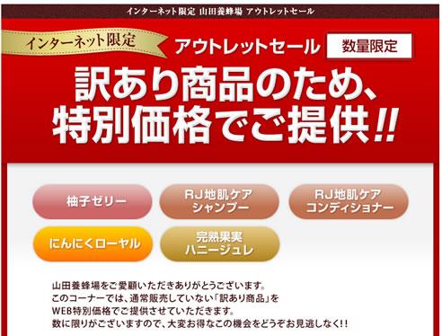 山田養蜂場 訳ありアウトレットセール 2013年1月