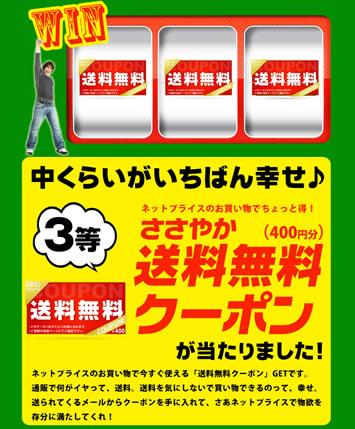 ネットプライスで送料無料クーポンをプレゼント中 2013年2月