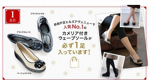 カメリアセットの靴の写真