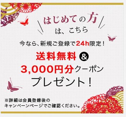 グラムールセールス 3000円クーポンのプレゼント