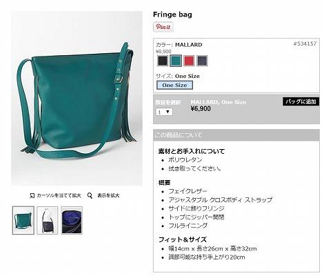Fringe bagの写真