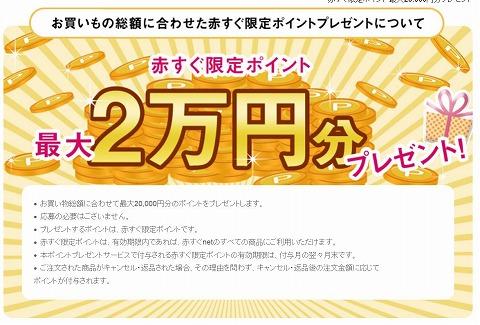 赤すぐnet 購入額に応じて最大2万円分のポイントをプレゼント