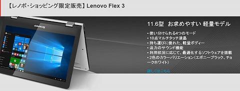 Flex 3の写真