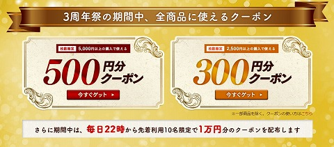300円・500円クーポンの説明