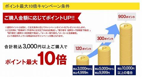 購入額とポイントプレゼントの説明